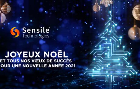 Joyeux Noël et tous nos vœux de succès  pour une nouvelle année 2021